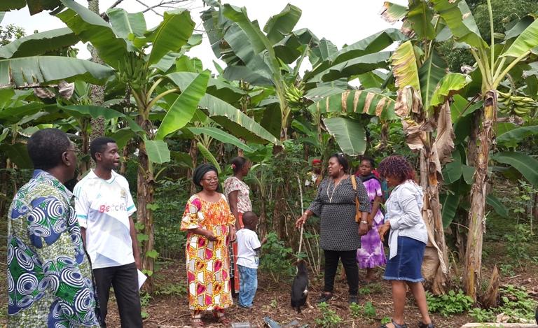 Les membres de l'ONG dans leur champ de banane @ gabonactu.com