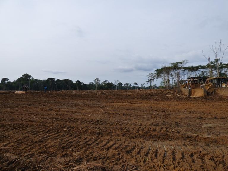 475 bulldozers pour mécaniser l'agriculture au Gabon