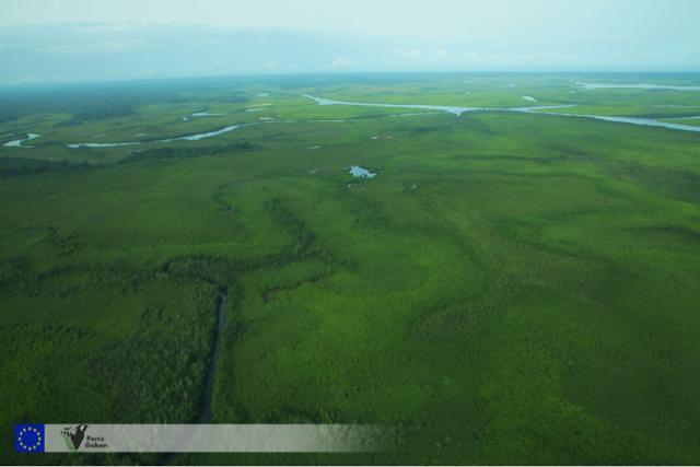 L'ANPN lance un programme de surveillance aérienne pour mieux protéger les parcs du Gabon