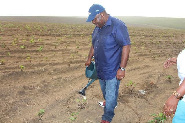 Ali Bongo sème des nouvelles « GRAINES » dans le Haut-Ogooué
