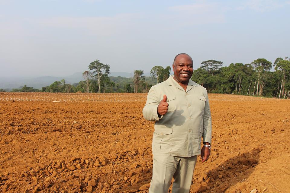 Ali Bongo à Franceville pour lancer le projet GRAINE