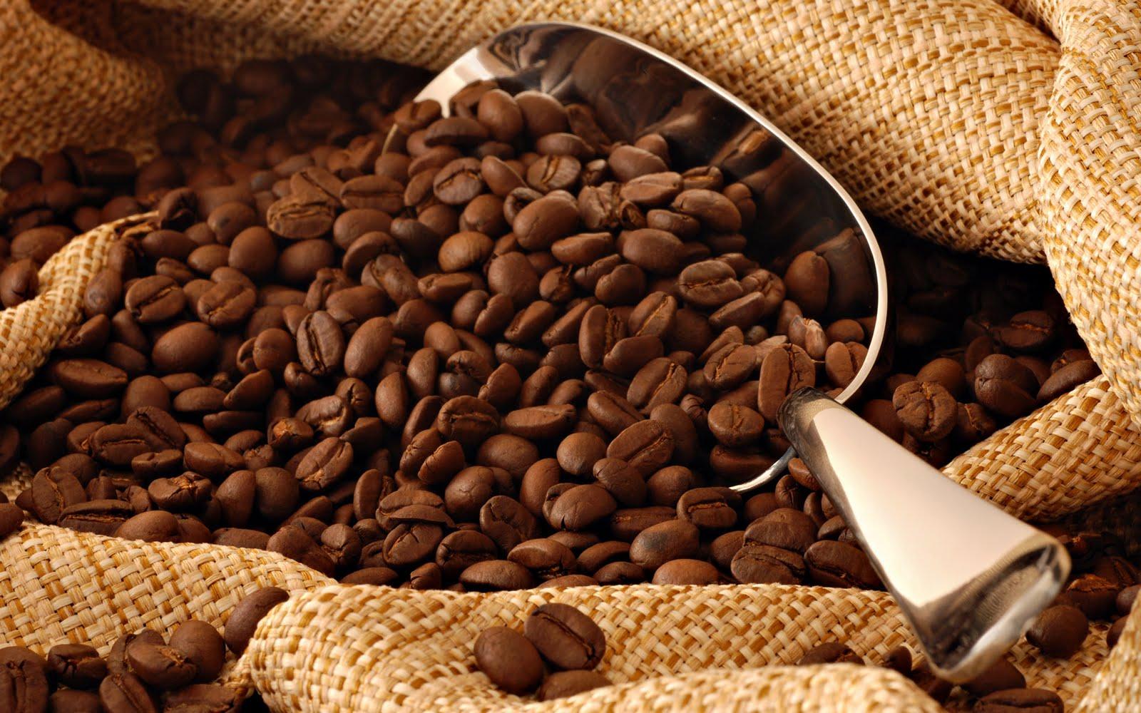 200 millions de FCFA pour acheter le café et le cacao auprès des planteurs