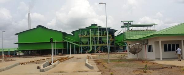 A Mouila, Olam érige sa plus grande usine d'huile de palme