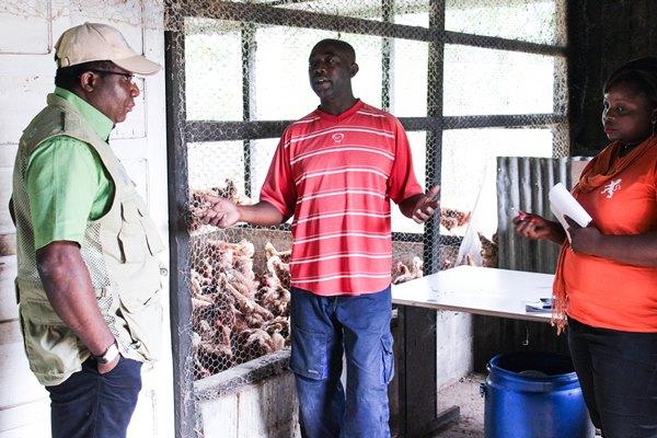 Une dizaine d'éleveurs gabonais étaient au Cameroun pour apprendre à fabriquer les aliments de bétail