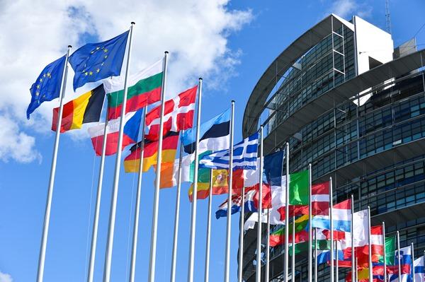 Résolution de l'EU : le projet qui circule sur Internet
