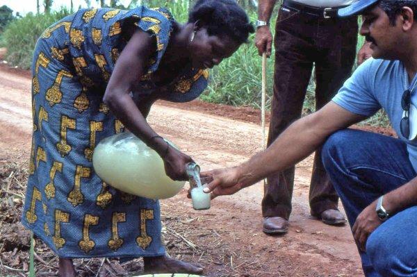 Yves Fernand Manfoumbi suggère à SOBRAGA de brasser le Musungu et le vin de palme