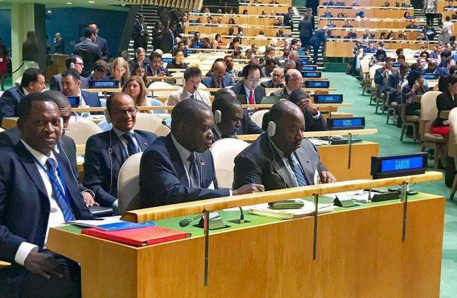Ali Bongo réaffirme sa volonté de protéger l'environnement pour un développement durable harmonieux