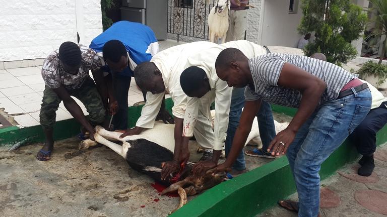 Les musulmans du Gabon ont célébré la fête du Mouton dans la fraternité