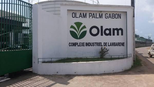 Olam: une parfaite reprise de l'usine d'huile autrefois opérée par Siat Gabon