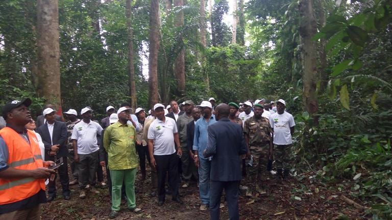L'Arboretum de Sibang, une forêt en danger