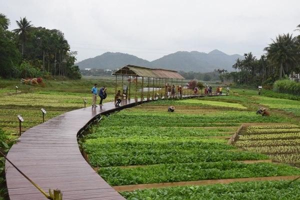 La province chinoise du Hainan invite les africains à venir découvrir son miracle économique