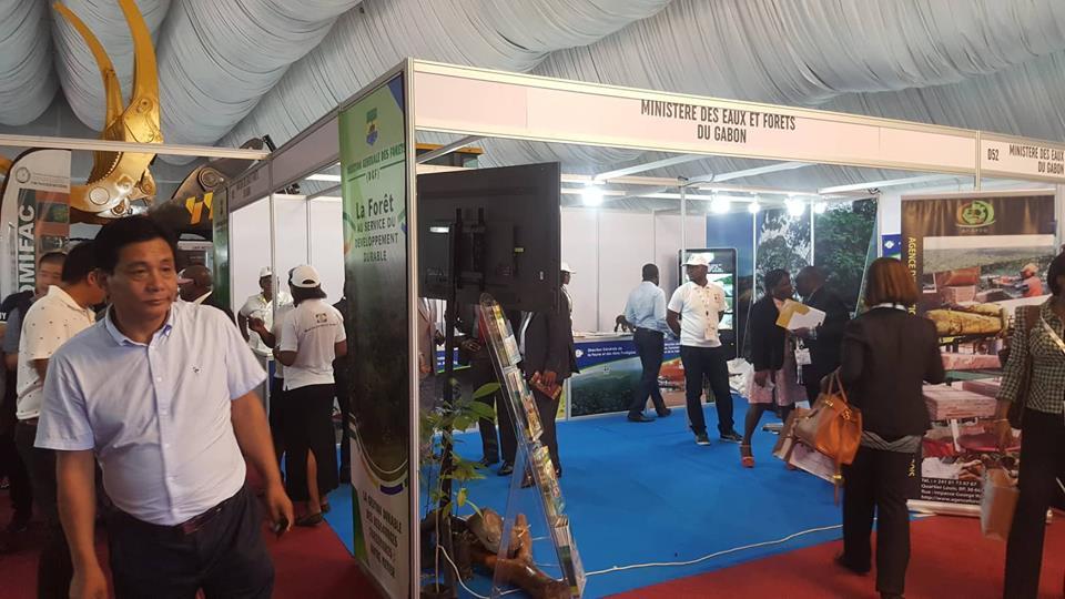 Ouverture du salon «Gabon woodshow» sur la promotion de la transformation du bois