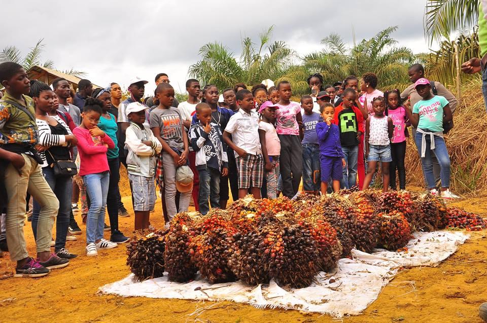 Plus de 200 jeunes sensibilisés sur les métiers agricoles