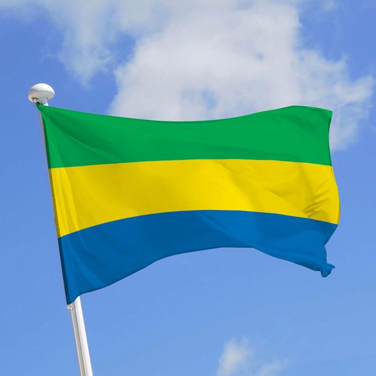 Vacance de pouvoir: un autre universitaire gabonais se lâche