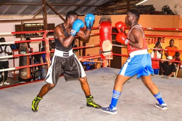Sport : le championnat de la ligue boxe de l'estuaire commence le 19 janvier