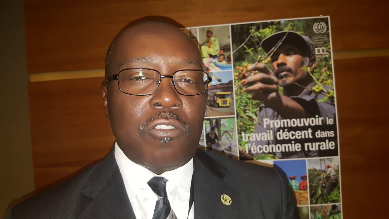 Agriculture: la BAD injectera 66 milliards de FCFA dans l'agriculture au Gabon