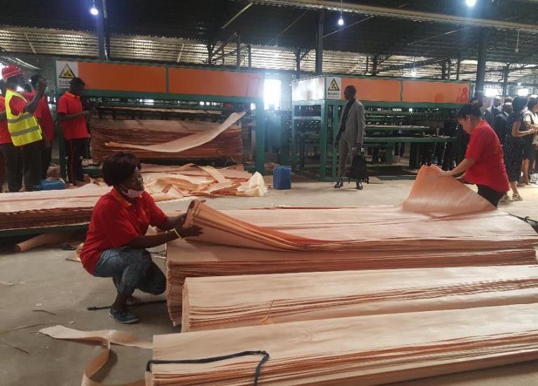 Gouvernance environnementale à la ZERP de Nkok : bientôt une entreprise pour transformer les déchets en matériaux de construction