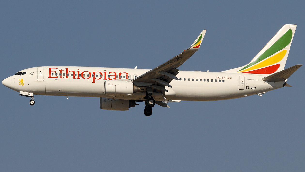 Le Gabonému présente ses condoléances aux familles endeuillées par le crash du vol d'Ethiopian Airlines